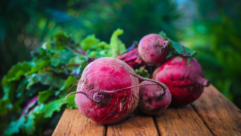 prehrana poljoprivreda
