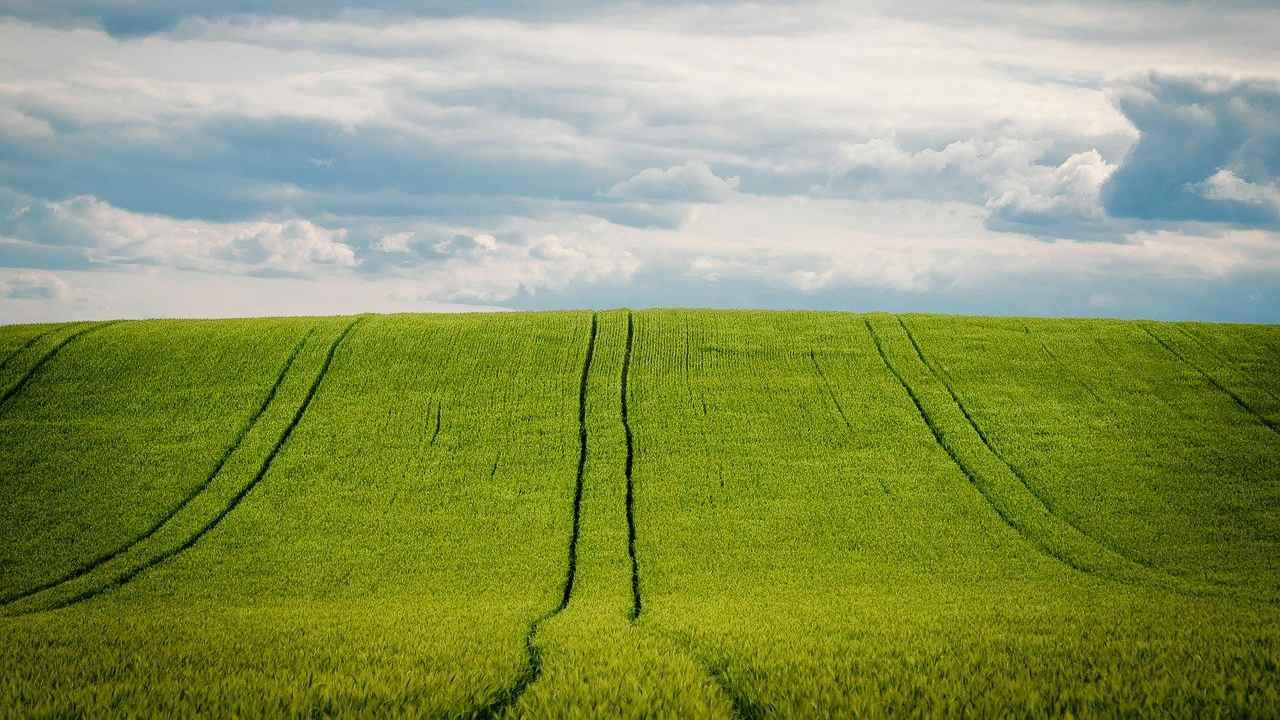 Potpore za poljoprivrednike
